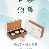极白白茶(新茶预售)