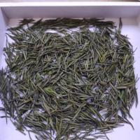 安吉白茶预售